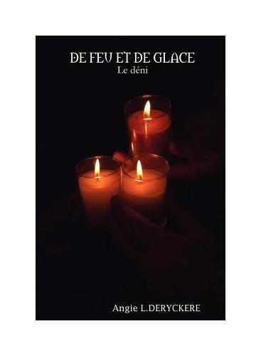 9782953995701: de Feu Et de Glace (Le D Ni)