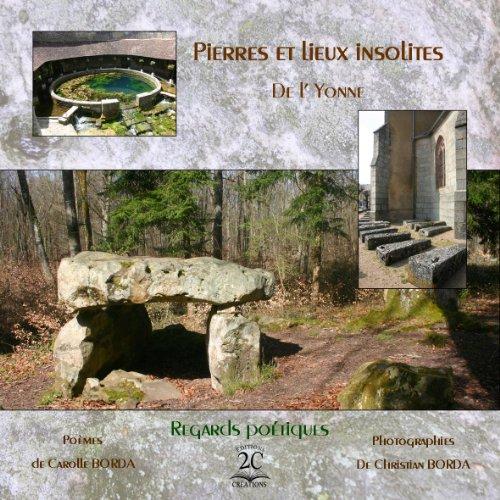 9782954032313: Pierres et Lieux Insolites de l'Yonne (Tome 1)