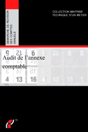 9782954899206: Audit de l'annexe comptable, démarche de révision des comptes annuels