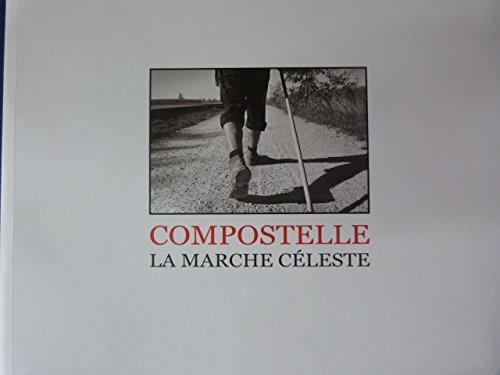 9782954922706: Compostelle - La marche céleste
