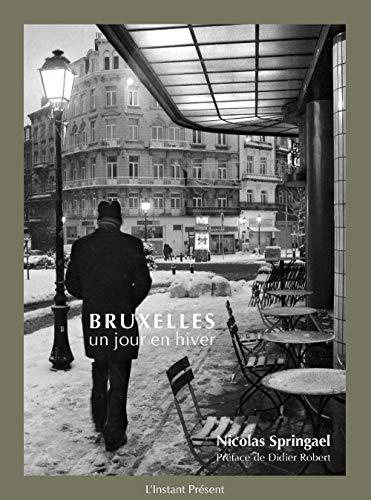 9782960035858: Bruxelles, un jour en hiver