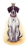 9783000217838: Der kleine Hundekoenig ...als Tümpelforscher
