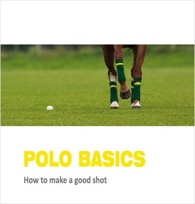 9783000324888: Polo Basics: How to make a good shot