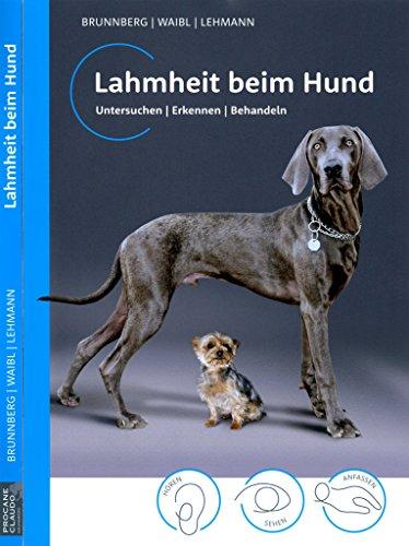9783000480881: Lahmheit beim Hund: Untersuchen/ Erkennen/ Behandeln