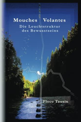 9783033021570: Mouches Volantes - Die Leuchtstruktur Des Bewusstseins (German Edition)
