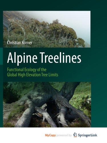 9783034803977: Alpine Treelines