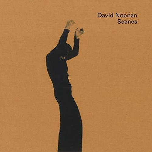 9783037640296: David Noonan: Scenes