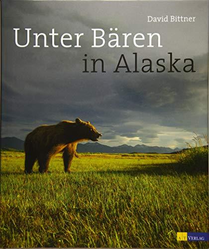 Unter Bären in Alaska: David Bittner