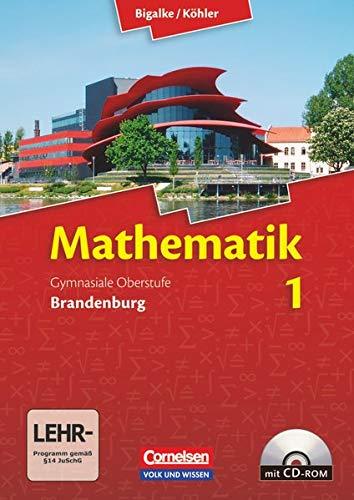 9783060059065: Mathematik Sekundarstufe II - Brandenburg - Neubearbeitung 2012 / Band 1 - Schülerbuch mit CD-ROM