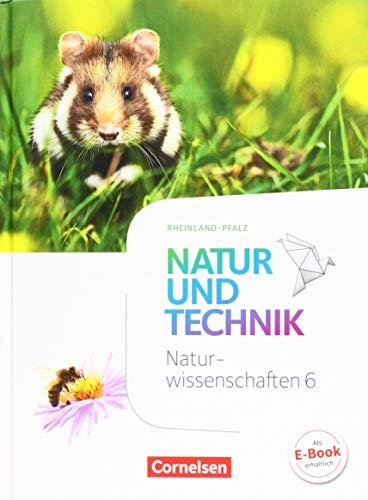 Natur und Technik - Naturwissenschaften 6. Schuljahr: Abegg, Volker; Austenfeld,