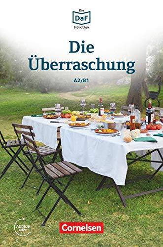 9783061207540: Die Uberraschung - Geschichten Aus Dem Alltag Der Familie Schall