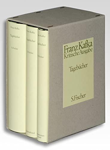 Tagebucher (Schriften, Tagebucher, Briefe / Franz Kafka) (German Edition) (3100381394) by Kafka, Franz