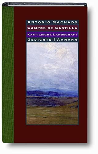 9783100487636: Kastilische Landschaften - Campos de Castilla