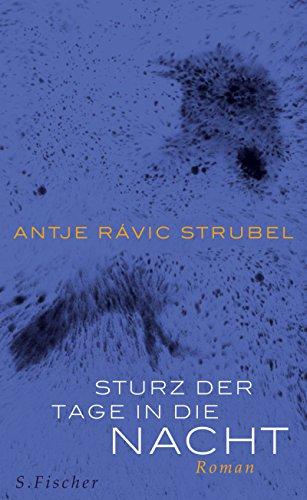 Sturz der Tage in die Nacht: Roman: Antje Rávic Strubel