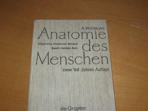 Anton Waldeyer; Anton Mayet: Anatomie des Menschen: Allgemeine ...