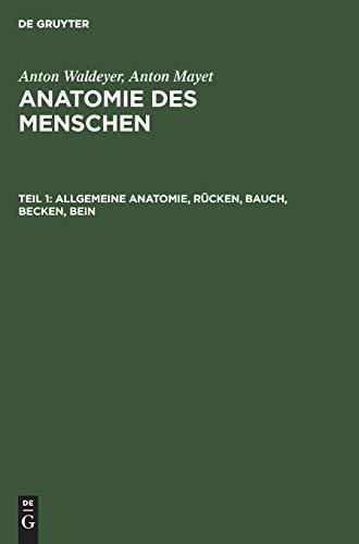 9783110059847: Allgemeine Anatomie, Rucken, Bauch, Becken, Bein