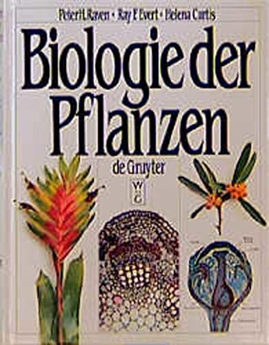 Biologie der Pflanzen Raven, Peter H.; Evert, Ray F. and Curtis, Helena