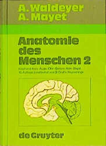 9783110132335: Anatomie des Menschen, 2 Bde., Bd.2, Kopf und Hals, Auge, Ohr, Gehirn, Arm, Brust