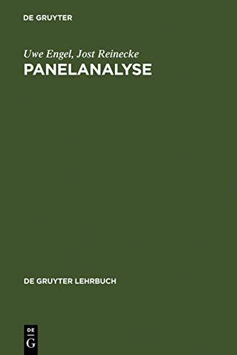 9783110135701: Panelanalyse: Grundlagen, Techniken, Beispiele (de Gruyter Lehrbuch)