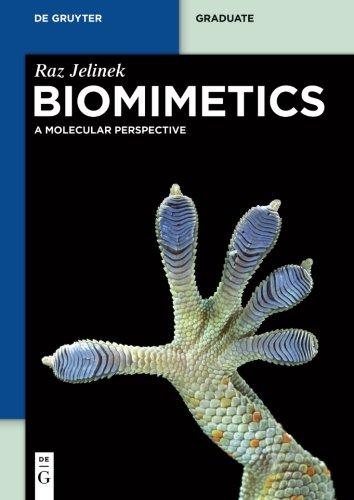 9783110281170: Biomimetics (De Gruyter Graduate)