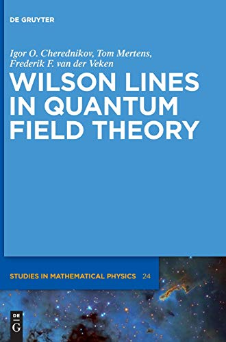 9783110309102: Wilson Lines in Quantum Field Theory (de Gruyter Studies in Mathematical Physics)
