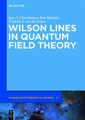 9783110309225: Wilson Lines in Quantum Field Theory (de Gruyter Studies in Mathematical Physics)