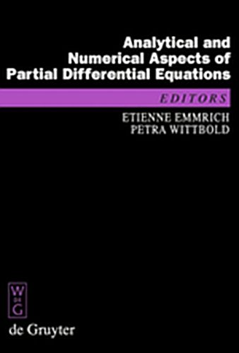 9783111733975: Analytical and Numerical Aspects of Partial Differential Equations: Notes of a Lecture Series (de Gruyter Proceedings in Mathematics)