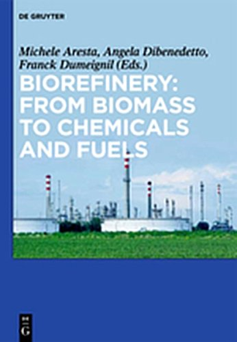9783119163491: Biorefinery: From Biomass to Chemicals and Fuels