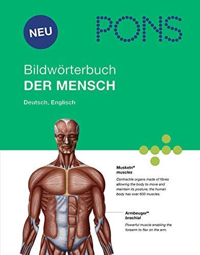 9783125178663: PONS Bildwörterbuch Der Mensch