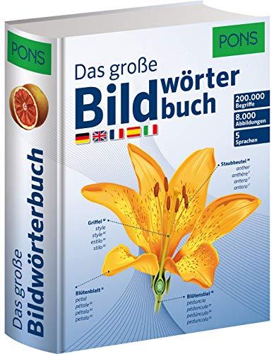 PONS Das große Bildwörterbuch: Deutsch, Englisch, Französisch, Spanisch und Italienisch (Hardback)