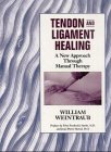 9783131304711: Tendon and Ligament Healing: A New Approach Through Manual Therapy