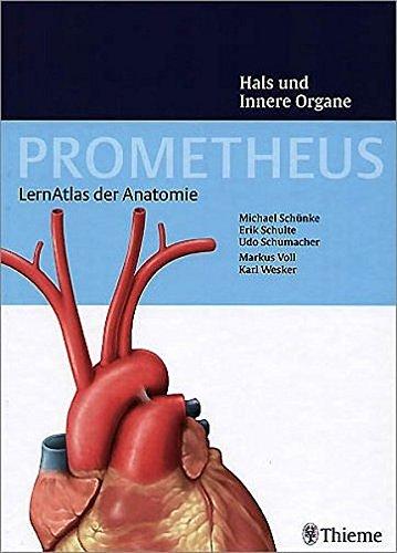 9783131395313: Prometheus Hals und Innere Organe: LernAtlas der Anatomie