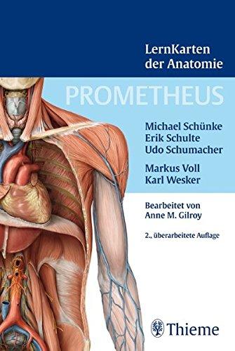 Prometheus Lernkarten der Anatomie - Schünke, Michael, Schulte, Erik