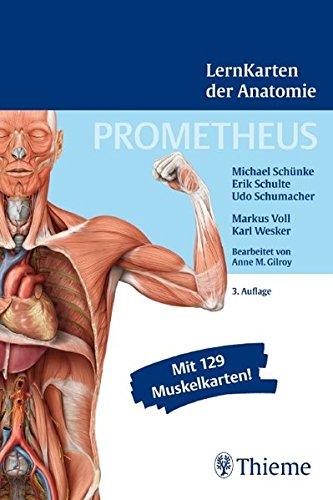 9783131468932: PROMETHEUS LernKarten der Anatomie