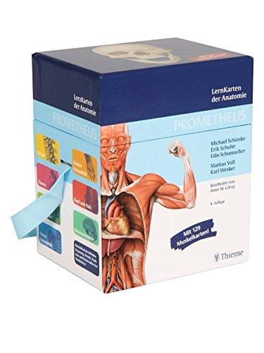 9783131468949: PROMETHEUS LernKarten der Anatomie