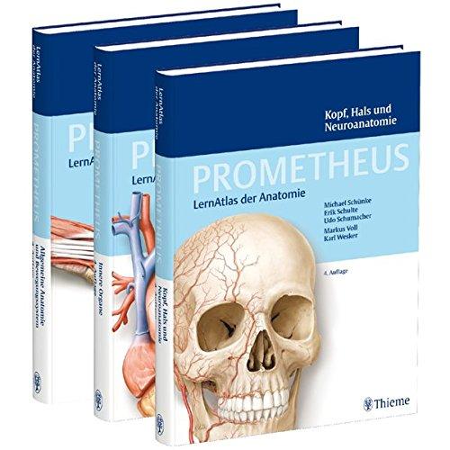 9783131601865: PROMETHEUS LernPaket Anatomie : Coffret en 3 volumes : Allgemeine Anatomie und Bewegungssystem ; Innere Organe ; Kopf, Hals und Neuroanatomie