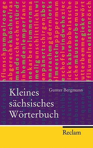 9783150215203: Kleines sachsisches Worterbuch