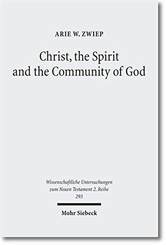 Christ, the Spirit and the Community of Essays on the Acts of the Apostles