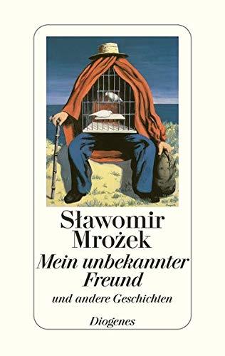 9783257062212: Mein unbekannter Freund und andere Geschichten. Kurze Erzählungen 1981-1985.
