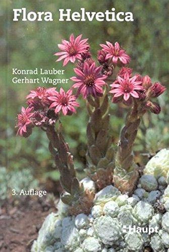 9783258063133: Flora Helvetica: Flora der Schweiz : 3773 Farbphotos von 3000 wildwachsenden Blüten- und Farnpflanzen, einschliesslich wichtiger Kulturpflanzen, Artbeschreibungen und Bestimmungsschlüssel
