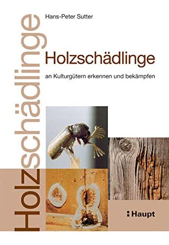 Holzschädlinge an Kulturgütern erkennen und bekämpfen: Hans-Peter Sutter