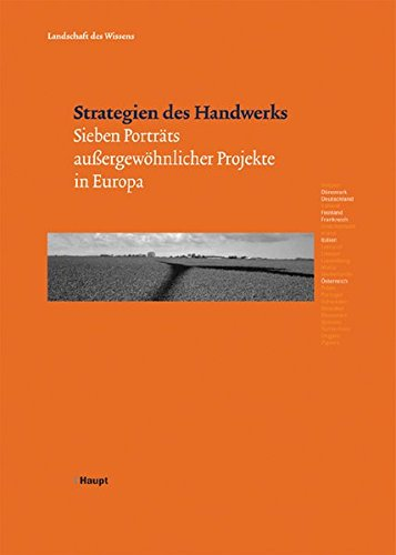9783258069241: Strategien des Handwerks: Sieben Portraits aussergew�hnlicher Projekte in Europa