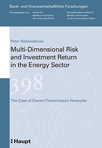Multi-Dimensional Risk and Investment Return in the Energy Sector: Peter Rabensteiner
