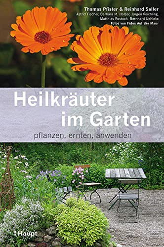9783258078304: Heilkr�uter im Garten: pflanzen, ernten, anwenden