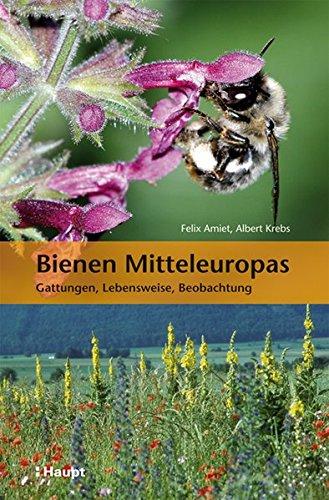 9783258079035: Bienen Mitteleuropas : Gattungen, Lebensweise, Beobachtung