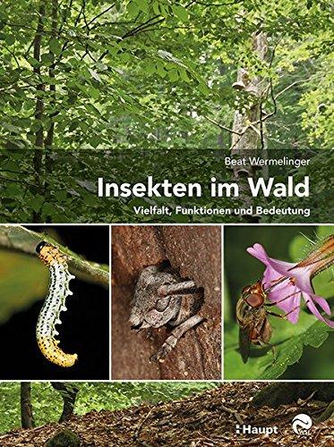 9783258079936: Wermelinger, B: Insekten im Wald