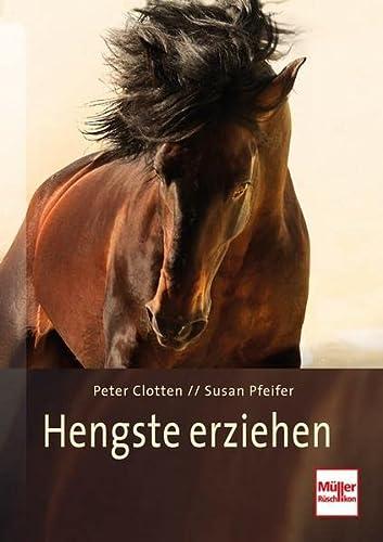 9783275016617: Hengste erziehen: So arbeiten die besten Pferdetrainer der Welt