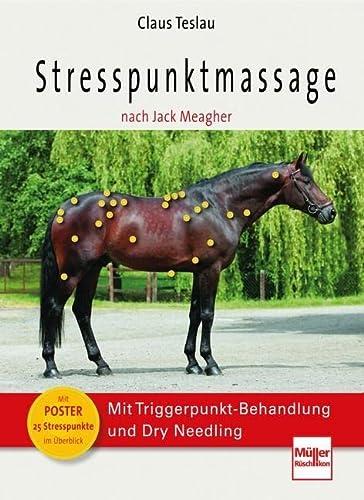 9783275019687: Stresspunktmassage nach Jack Meagher: Mit Triggerpunkt-Behandlung und Dry Needling