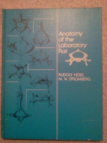 9783282023011: Anatomy of the Laboratory Rat