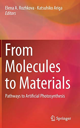9783319137995: From Molecules to Materials: Pathways to Artificial Photosynthesis